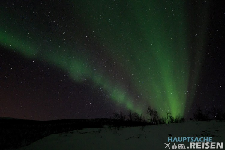 Aurora Borealis in Alta Norwegen